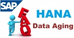 SAP HANA Data Aging Interview Questions and Answer