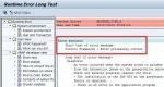 MESSAGE_TYPE_X Short Dump in SAP ABAP