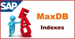 SAP MaxDB Indexes Interview Questions and Answer