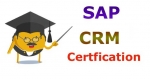 SAP CRM ERP Tool Certification Cost and Course Duration in India