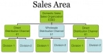 Difference between Sales Area and Sales Organization