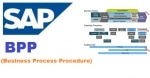 Business Process Procedure (BPP)