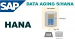 Data Aging Function Technicality in SAP HANA