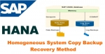 HANA Homogeneous System Copy Backup/Recovery Method