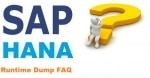 HANA Runtime Dump Interview Questions and Answers